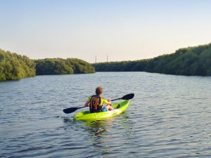 Kayaking at Al Zorah_2