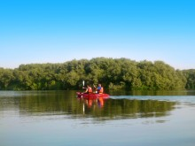 Kayaking at Al Zorah_3