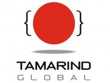 4X3 TAMARIND